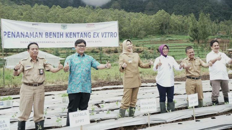 (dari kiri) Kadis Pertanian Sugeng Pramono, Kepala BPPT Unggul Priyanto, Wali Kota Batu Dewanti Rumpoko, Deputi Bidang Teknologi Agroindustri Bioteknologi BPPT, Eniya L. Dewi dan Wawali Punjul Santoso agenda penanaman bibit kentang unggulan di Sumberbrantas, Batu, Senin (22/1). (Diskominfo Kota Batu)